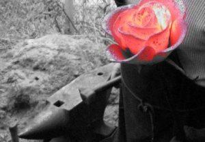 rose en fer frogé